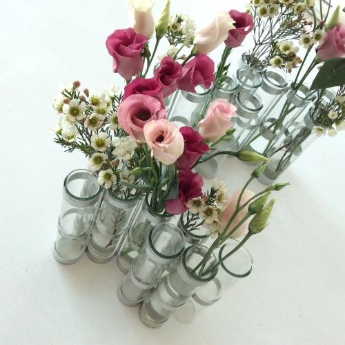 Dansmabesace - Fleurs
