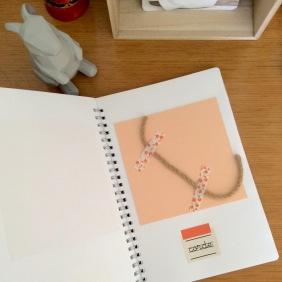dansmabesace-carnet-tactile-corde