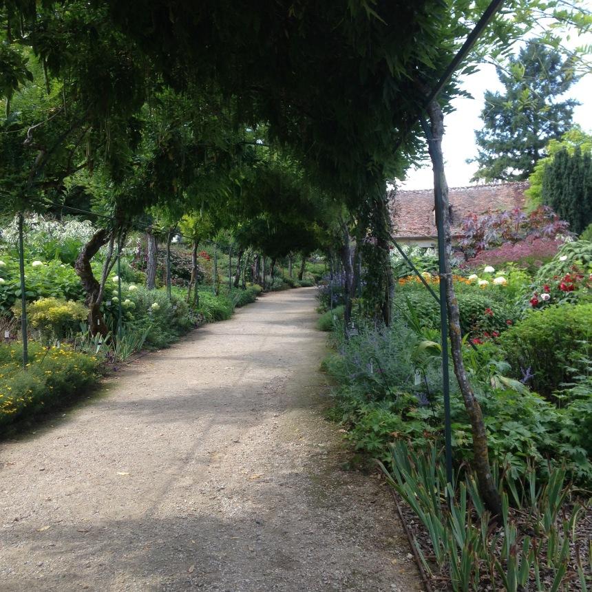 Dansmabesace - Slowlife - Parc floral Apremont sur allier - Glycines2