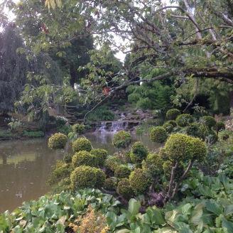 Dansmabesace - Slowlife - Parc floral Apremont sur allier - Végétation japonisante