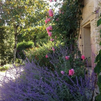 Dansmabesace - Slowlife - Parc floral Apremont sur allier - Végétation méridionale