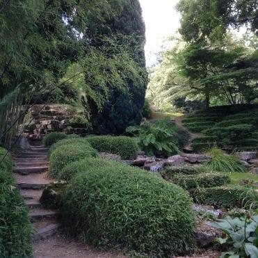 Dansmabesace - Slowlife - Parc floral Apremont sur allier - Zone asiatique