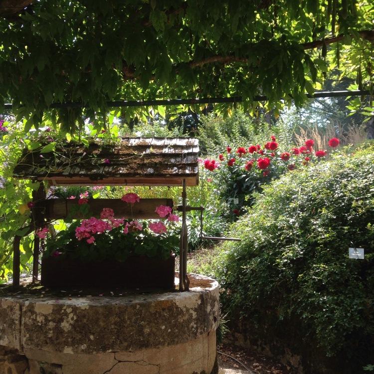 Dansmabesace - Slowlife - Parc floral d'Apremont sur allier - Zone provençale