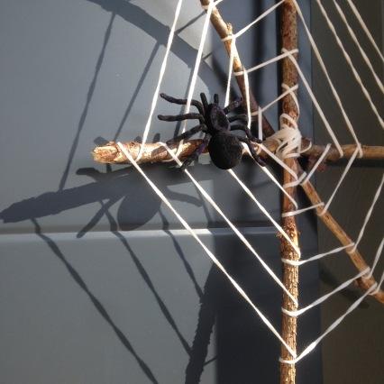 Dansmabesace - Happy Days - Halloween 2017 - Toile araignée zoom mygale