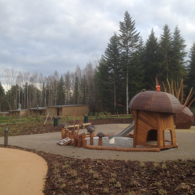 Dansmabesace - Center parcs Les Trois Forêts - Forest Lodge - Extérieur